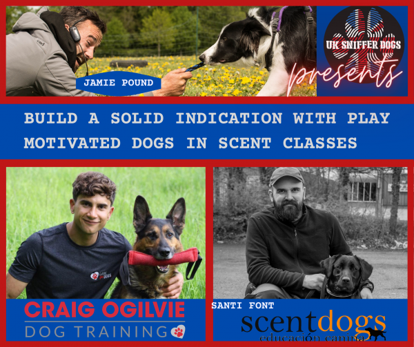 Build a Solid Indication with Play Motivated Dogs in Scent classes