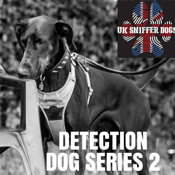 Detection Dog Series Two