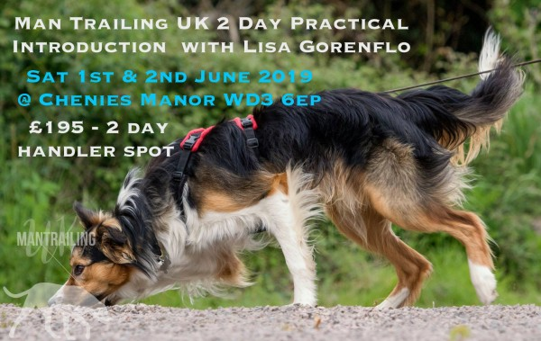 Mantrailing UK - 2 day Teach your dog to find People