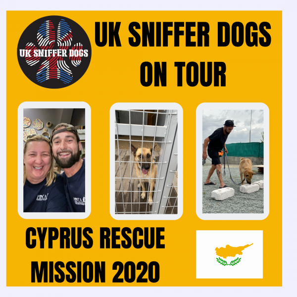 Mission : 2nd Chance Dogs Cyprus. Using Scent to Rehabilitate , Reward & Re-home